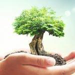La justice environnementale : équité, reconnaissance et participation