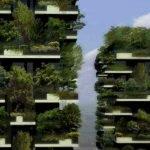 Les fermes urbaines verticales : l'agriculture de l'avenir?
